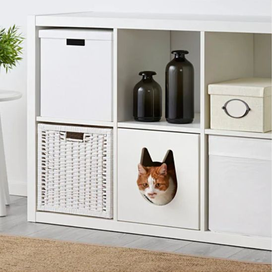 IKEA,Pet ,IKEA Launches Pet Home Series in China